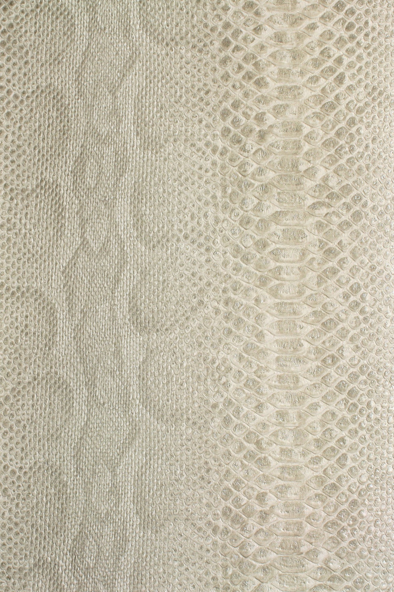 b b home passion 3 tapete becker vliestapete 453324 afrika schlange beige. Black Bedroom Furniture Sets. Home Design Ideas