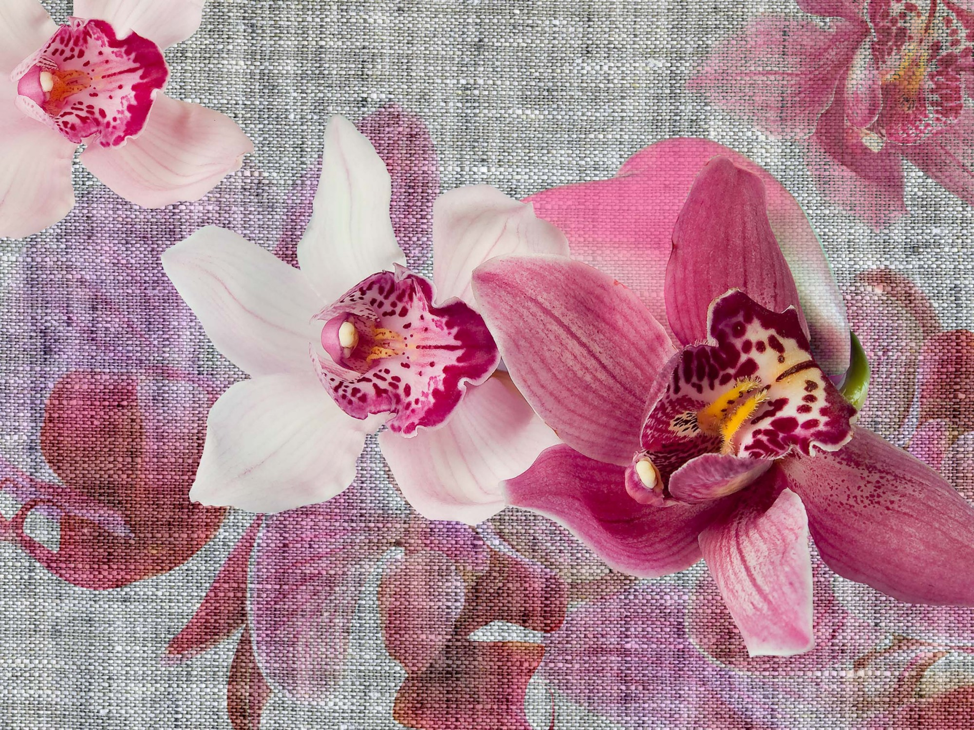 wandbild 360 x 270 cm 4 teilig kleister fototapete orchidee blumen bl ten. Black Bedroom Furniture Sets. Home Design Ideas