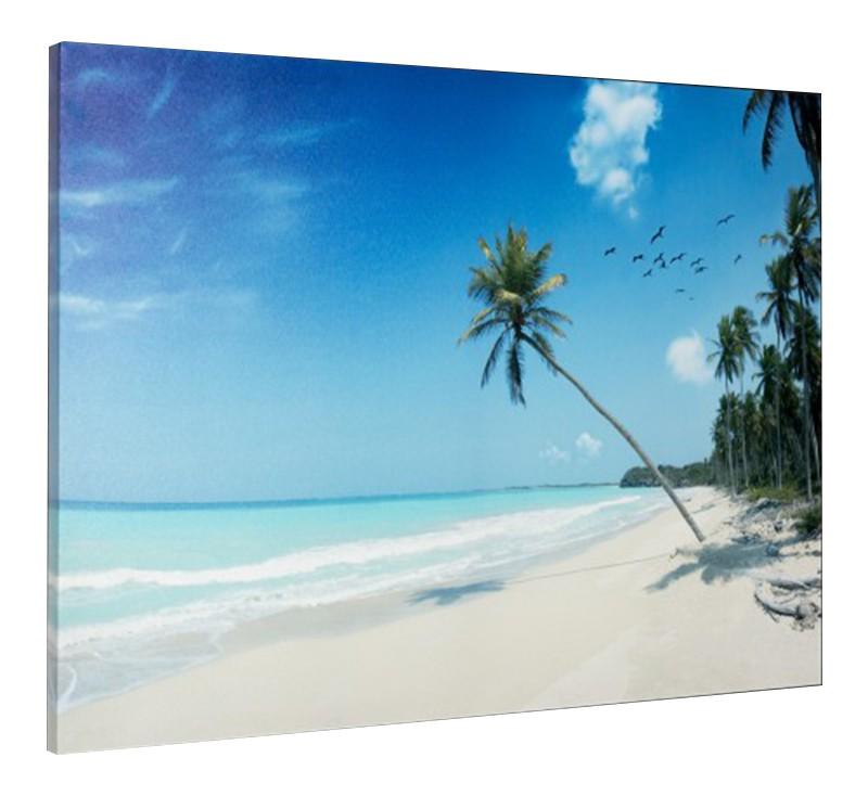 leinwand bild keilrahmen bild strand palmen meer urlaub karibik 60x80 cm ebay. Black Bedroom Furniture Sets. Home Design Ideas