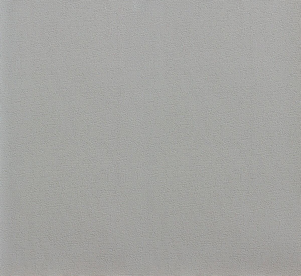 tapete vlies grau uni rasch let 39 s classic 859010 1 86. Black Bedroom Furniture Sets. Home Design Ideas