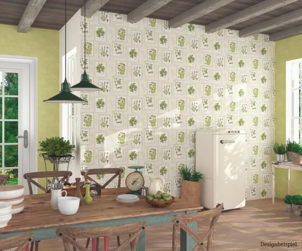 Tapete Küche Kräuter creme beige grün Tapete Aqua Relief 4 Rasch ...